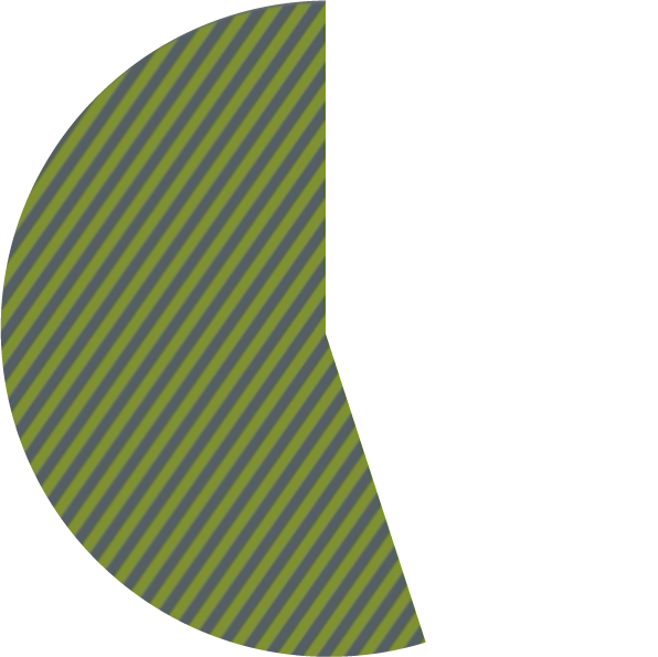pie chart showing 55 percent