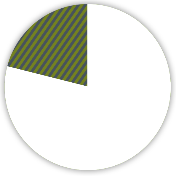 pie chart shows 20 percent